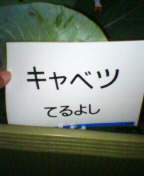 040916_201101.jpg